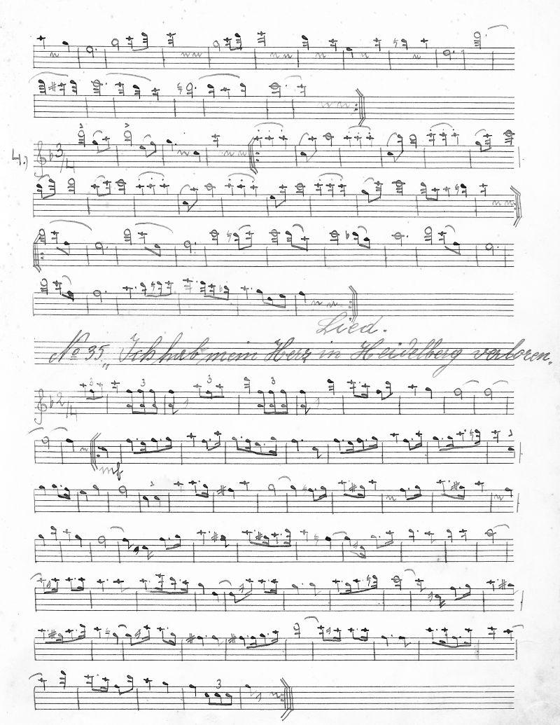 Verloren heidelberg ich text akkorde herz in mein hab Songtext von